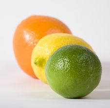 Free Lime, Orange, Lemon Stock Photography - 4312092