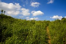 Free Meadows & White Clouds Stock Images - 4312144