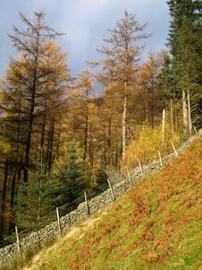 Free Steep Footpath Up Helvellyn Royalty Free Stock Images - 4314249