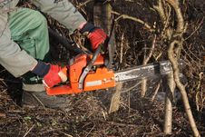 Free Chain Saw At Work Stock Image - 4314321