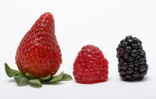 Free Berries Royalty Free Stock Photography - 4314557