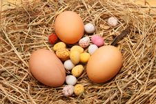 Free Mixed Eggs On Straw Royalty Free Stock Image - 4316576