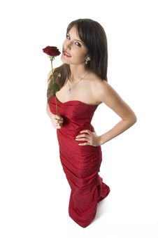 Free Girl And Rose Royalty Free Stock Images - 4316919