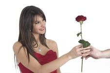 Free Girl And Rose Royalty Free Stock Photo - 4316995