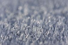 Morning Frost Crystals Royalty Free Stock Photo