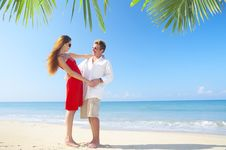 Free Tropic Swing Royalty Free Stock Photo - 4321655