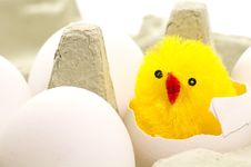 Free Easter Chicken Royalty Free Stock Image - 4324406