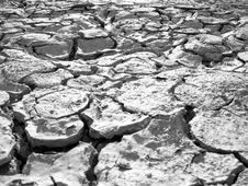 Dry Out Lake Bed Texture Royalty Free Stock Image