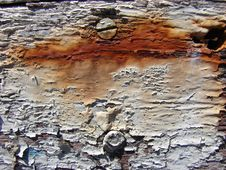Free White And Rusty Peeling Paint Stock Photography - 4328102
