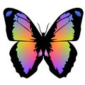 Free Butterfly 13 Royalty Free Stock Images - 4331939