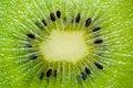 Free Kiwi Macro Stock Images - 4334154