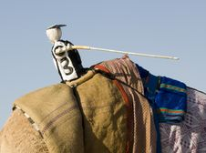 Free Camel Training - Mechanical Jockey Royalty Free Stock Images - 4330389
