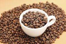 Free Coffee Cup Royalty Free Stock Images - 4330859