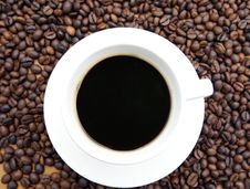 Free Coffee Cup Stock Photo - 4331000