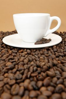 Free Coffee Royalty Free Stock Photo - 4331015
