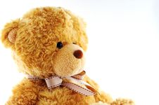 Free Teddybear Stock Photo - 4331700