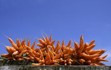 Free Carrot Display Stock Photography - 4331972