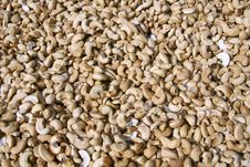 Free Dried Cashew Nuts Display Stock Photography - 4331992