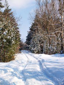 Free Winter Lane Royalty Free Stock Photos - 4333428