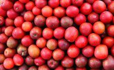 Exotic Fruit Market Royalty Free Stock Image