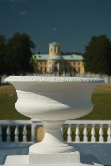 Free Vase Royalty Free Stock Images - 4335529