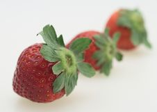 Free Three Strawberry Royalty Free Stock Photography - 4338247