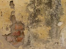 Free Old Wall Royalty Free Stock Images - 43310809