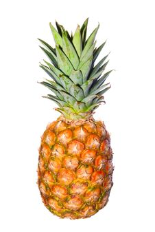 Free Pineapple Isolated Royalty Free Stock Images - 4340809