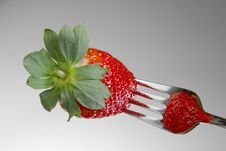 Free Strawberry On A Fork Stock Images - 4341644