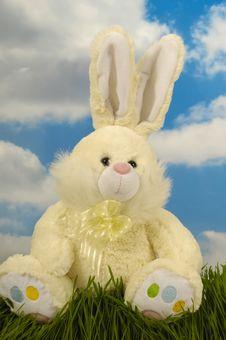 Free Easter Bunny Stock Photos - 4342263