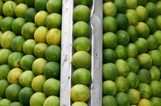 Free Oranges Lined Up At Juice Shop, Delhi Royalty Free Stock Image - 4345036