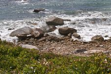 Free Pebble Beach Detail Royalty Free Stock Photos - 4345108