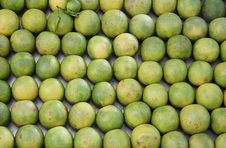 Free Oranges Lined Up At Juice Shop, Delhi Stock Photography - 4345112