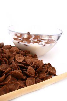 Free Fresh Milk Royalty Free Stock Images - 4345689