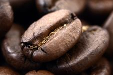 Free Coffee Grain Royalty Free Stock Image - 4345846