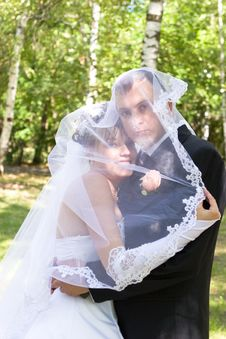 Free A Happy Newly-married Couple Under The Veil Royalty Free Stock Image - 4346246