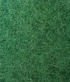 Free Texture. Sponge. Royalty Free Stock Image - 4347266