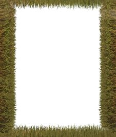 Free Frame Grass. Nature Background Royalty Free Stock Image - 4347726