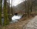 Free Wooden Bridge Royalty Free Stock Photo - 4351855