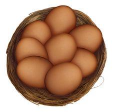 Eggs-nest-2 Royalty Free Stock Photo