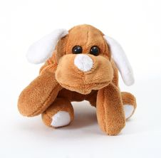 Free Soft Toy Dog Stock Photos - 4352513