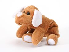 Free Soft Toy Dog Royalty Free Stock Photography - 4352517