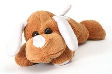 Soft Toy Dog Stock Image