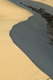 Free Sand Dunes Near Stovepipe Wells, Death Valley Royalty Free Stock Image - 4354176
