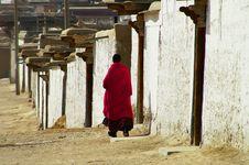 Free Lone Lama Royalty Free Stock Image - 4354986