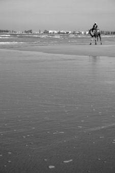 Free Essaouira Beach Stock Image - 4356431