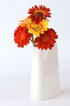 Free Flower-piece Royalty Free Stock Photography - 4356997