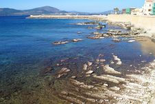 Free Sea Near Alghero Royalty Free Stock Image - 4358096