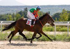 Free Horse Racing Royalty Free Stock Photos - 43573308