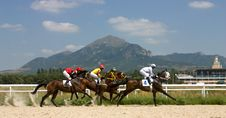 Free Horse Racing Stock Photos - 43575733